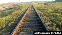 Turkmenistan. Railroad Ashgabat - Serhetabat. Field. Green grass. April 10, 2015