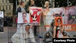 Акция в защиту животных в Петербурге