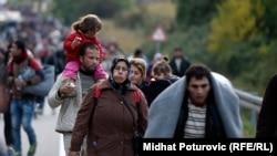 Qaçqınlar Xorvatiya-Macarıstan sərhədində.