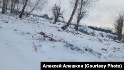 Кладбище поселка Шумский после наводнения и перезахоронения