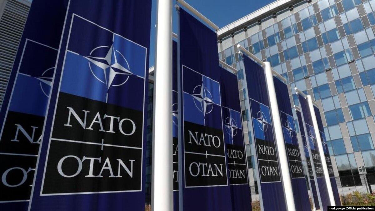 Граждане более трети стран НАТО не готовы защищать союзников в случае нападения России – исследования
