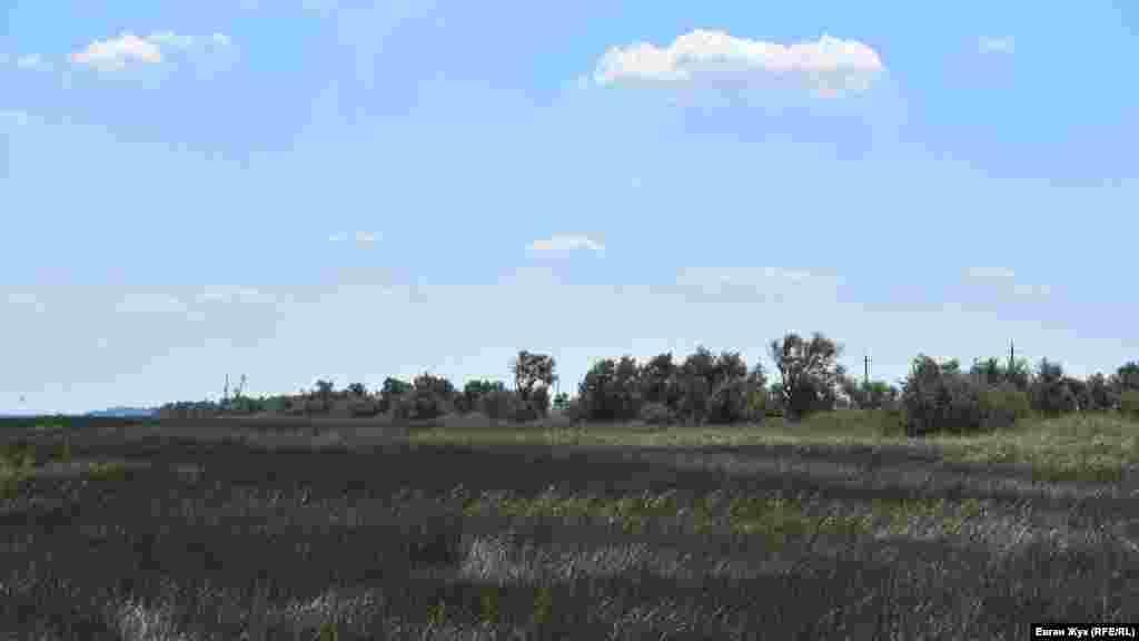 Зазвичай до кінця літа трава тут повністю висихає, а через багать мандрівників часто стаються пожежі. Однак, на подив, цьогоріч трава досі зелена
