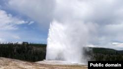 Горячий гейзер в национальном парке Йелоустоун (Yellowstone National Park). При температуре 60 градусов на раскаленной почве рядом с гейзером растет трава. Эта трава заражена специальным вирусом. Именно этот вирус делает растение термостойким.