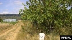 Mакедонско српска граница