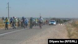 Қала сыртынды өткен велошеру күре жолдағы көліктерді бөгеді. Оңтүстік Қазақстан облысы, 28 мамыр 2016 жыл.