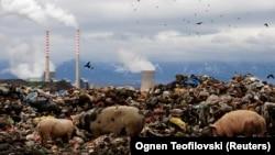 عکسی از حاشیه یک نیروگاه ذغالسنگی در مقدونیه