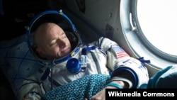 Американский астронавт Скотт Келли. Фото из базы Wikimedia.