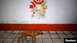 """Со стен стадиона """"Кошево"""", где 30 лет назад зажегся олимпийский огонь, еще не стерта праздничная символика-1984. Снимок 2013 года"""
