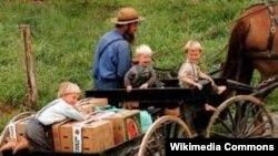 Один из членов секты амишей на телеге с детьми. Амиши не любят фотографироваться.
