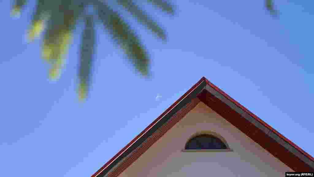 Луна убывает под японской акацией (альбицией)