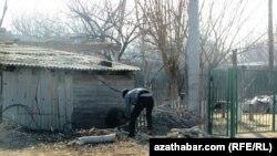 Мужчина рубит дрова в туркменском селе Сарыжа. 6 января 2014 года.