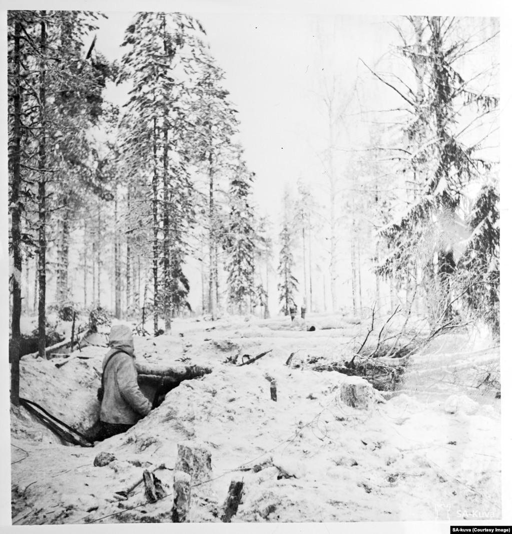 Фінський військовий вивчає ліс