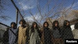 Taliban fighters arrested by Afghan border police in Kabul.