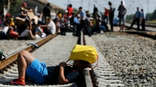 Sa izbeglicama na putu u Hrvatsku