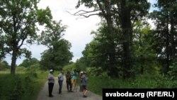 У Перароўска-Сьнядзінскім масіве