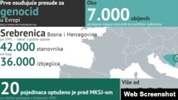 Netherlands - ICTY web site on Srebrenica genocide, undated
