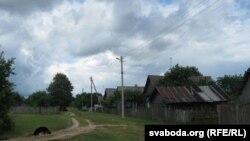 Вёска Партызанская, вуліца, на якой жывуць Ірына ды Гела Берберашвілі