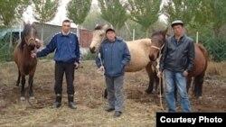 Кыргыз жылкысын өстүргөн мургабдык кыргыздар