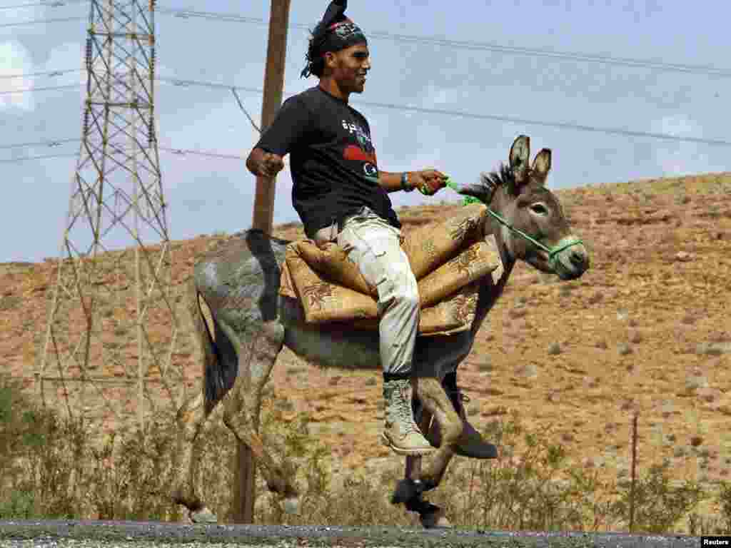 A Libyan National Transitional Council fighter rides a donkey at a checkpoint near Bani Walid on September 29. (REUTERS/Saad Salash)