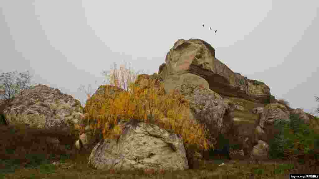 Масив Сирт-Кая, на якому збереглися руїни скіфської фортеці