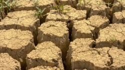 Азия: засуха и нехватка воды