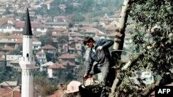 Мужчина спиливает дерево для заготовки дров в период затишья боевых действий. Сараево, 11 октября 1995 года.
