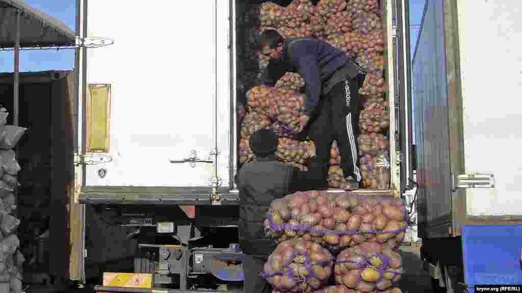 Цена крымской картошки всегда была выше привозной – то ли из-за трудностей выращивания, то ли ценилась за вкус. «Крымская роза», например, оптом в районе 25 рублей за килограмм (7 гривень)
