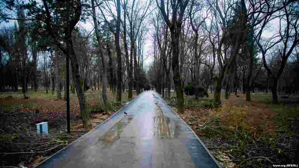 Осенью 2017 года подконтрольные России власти Симферополя приступили к реконструкции парка