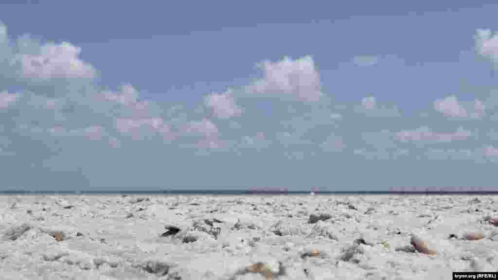 Через відкладення солі пейзаж тут має космічний вигляд