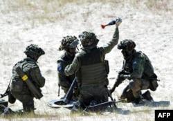 Солдаты НАТО на учениях в Польше, лето 2015 года