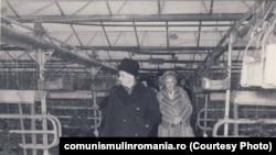 27 ianuarie 1983. Vizită de lucru la serele din Scornicești