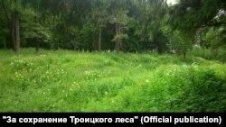 Троицкий лес