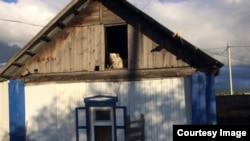 Собака Черных, спасенная на чердаке
