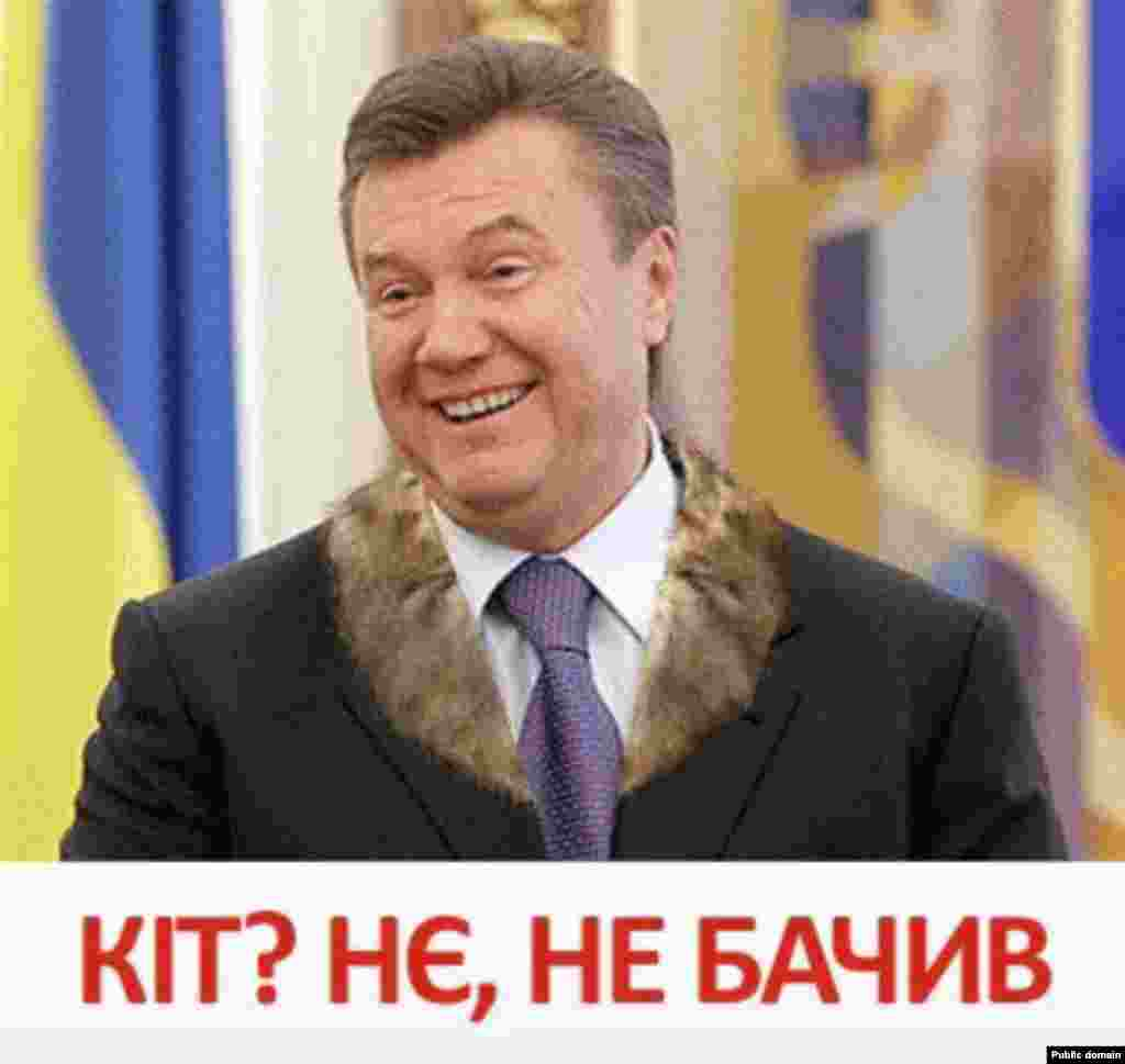 "Yanukovych: ""Cat? No. No, haven't seen it."""