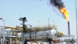 حقل الحلفاية النفطي العراقي في العمارة