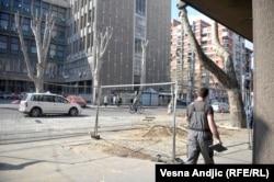 Seča drveća u centru Beograda, mart 2019.