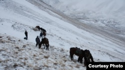 Фото фонда «Сорос-Кыргызстан».