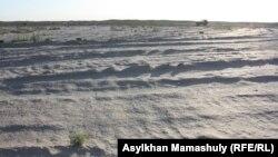 """На месте падения ракеты-носителя """"Днепр"""", которое привело к разливу гептила в степи. Кызылординская область, 16 июля 2013 года."""