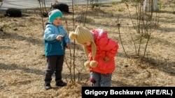 Саша и Женя - дети из украинской семьи, приехавшей в Ростовскую область