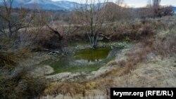 Пересохлий водоспад і змілілі «ванни молодості»: Кизил-Коба взимку (фотогалерея)