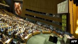 Generalna skupština UN tokom glasanja o rezoluciji, Njujork, 3. avgust 2012.