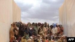 Группа сомалийцев, бежавших в соседнюю Эфиопию из зоны боёв в Сомали