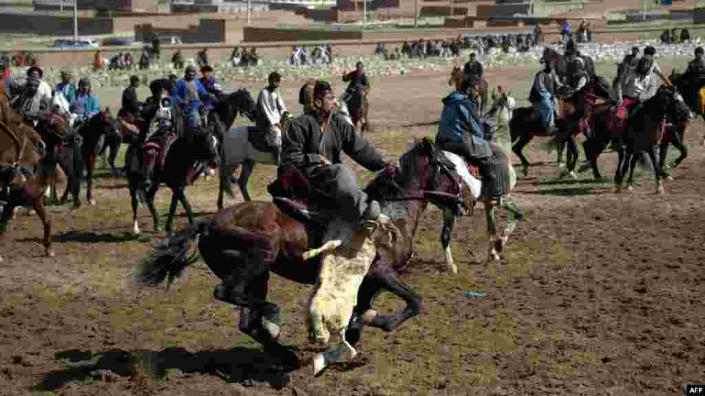 Afghan horsemen compete during the traditional sport of Buzkashi in Kabul. (AFP/Johannes Eisele)