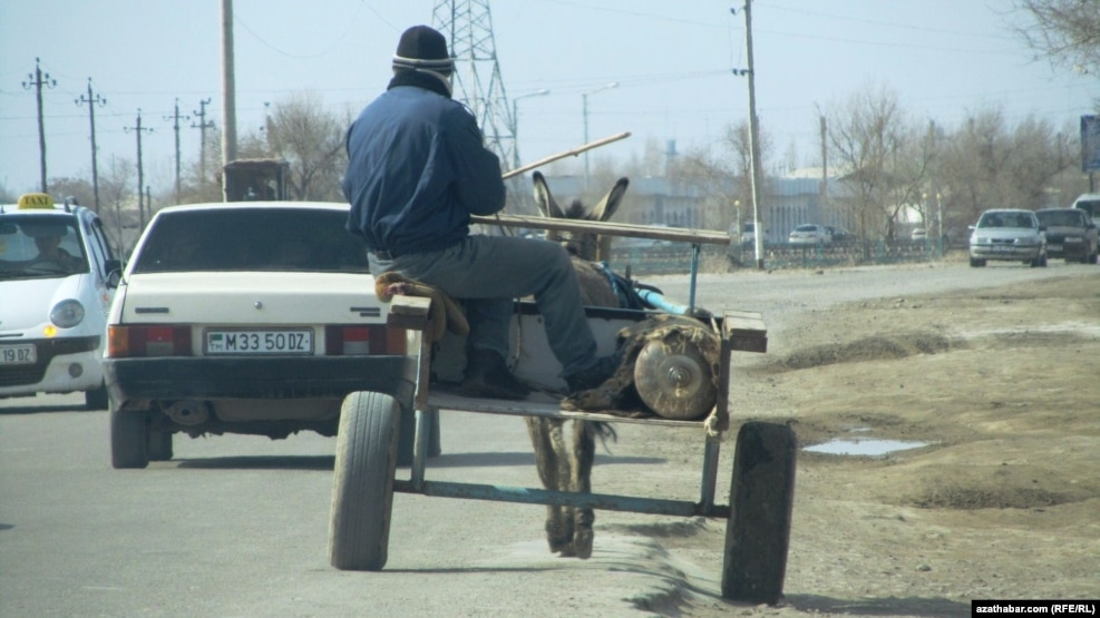 Awto ulagy bolmadyk daşoguzlylar suw almaga eşek arabaly gatnaýarlar.