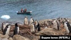 Киянин вирушає на острів Сигна у складі інтернаціональної експедиції радіолюбителів