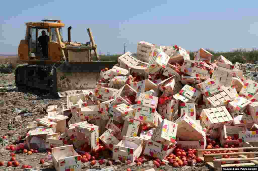 Указ про знищення продуктів викликав обурення у багатьох росіян