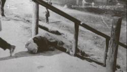Геноцид проти українців – це помста Сталіна за спротив (відео)