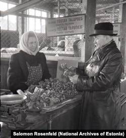 Мужчина на рынке выбирает редис, выращенный в колхозе «Рабочее крестьянство» в 1956 году.