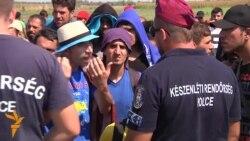 Migrantlar protest bildirýär