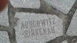 Antiţiganismul din Germania